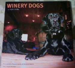 Book, Winery Dogs