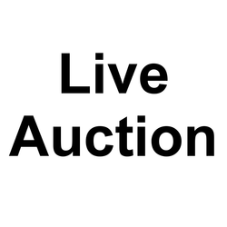 Live Auction Lot 7